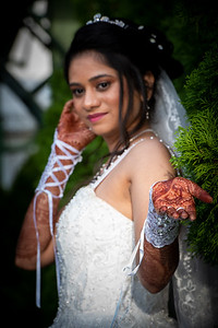 Raginold & Sweta Wedding 0034