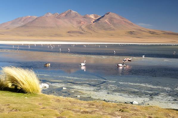 Gorgeous landscapes of Sur Lipez, South Bolivia
