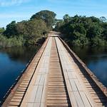 Wooden bridge in the wet lands of Pantanal, Brazil.
