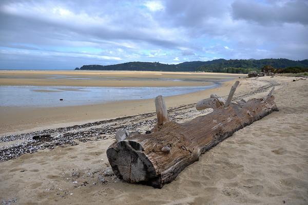 One of Abel Tasman National Park's beach, South Island, New-Zealand