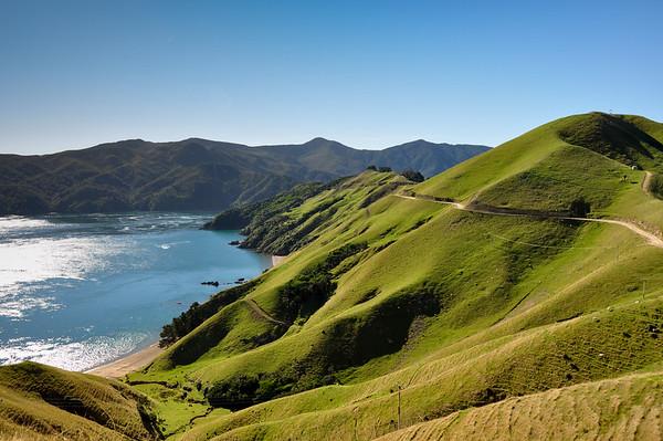 Marlborough Sounds, South Island, New-Zealand