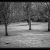 L'Isle Adam (95) : visite des enfants dans notre maison. Elodie et Christophe restent coucher. Petite balade par un froid de canrd dans le parc. Et on fete l'anniversaire de Clementine!!