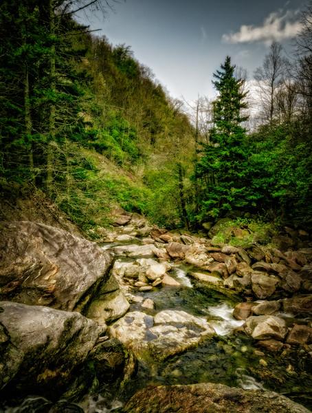 Forgotten Ravine