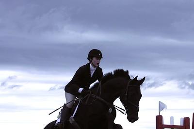 2012 Northern Virginia Equine Scene