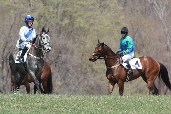 Spring Loudoun Hunt Point to Point