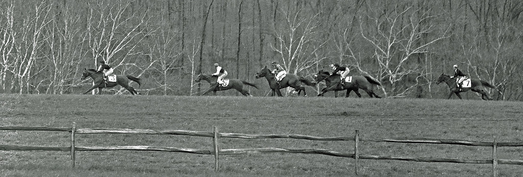 At the Loudoun Hunt Point to Point