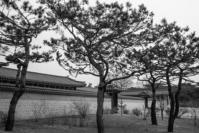 20170325-30 Gyeongbokgung Palace 051