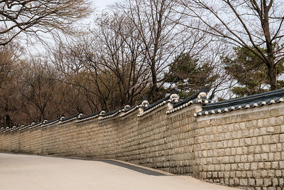20170325 Changdeokgung Palace 051