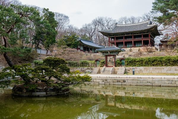 20170325 Changdeokgung Palace 062
