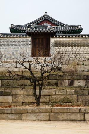 20170326 Changgyeongung Palace 008