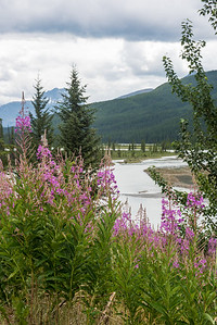 20150713 Banff Jasper 052