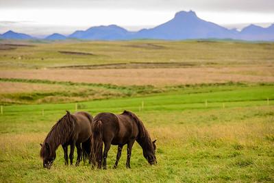20180824-31 Iceland 357