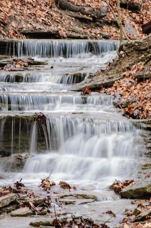 20061231 Cox Arboretum 042