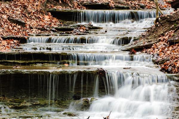 20061231 Cox Arboretum 035