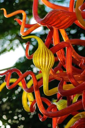 20080301 Franklin Park Conservatory 058