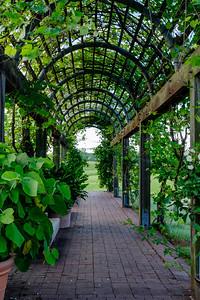 20180526 National Arboretum 002