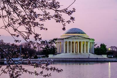 20190329-30 DC Cherry Blossoms 025-e1