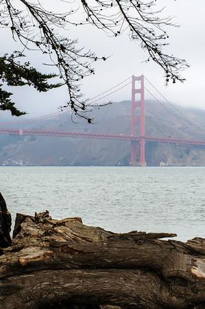 20101105 San Francisco 025