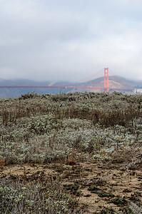 20101105 San Francisco 004