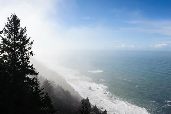 20101108 Redwoods National Park 029