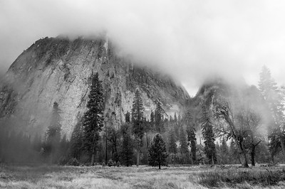 20101110 Yosemite 024