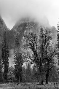20101110 Yosemite 026