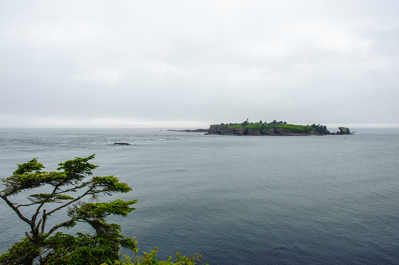 20110714 Cape Flattery 019