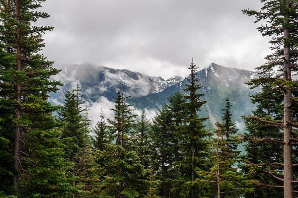 20110714 Mt Ranier 007