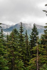20110714 Mt Ranier 006