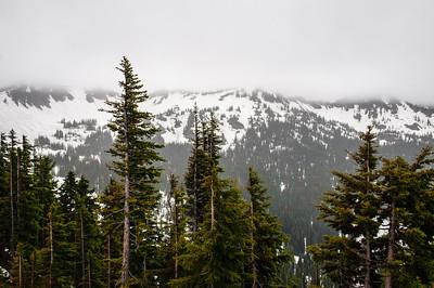 20110714 Mt Ranier 009