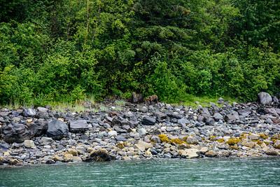20150724 Glacier NP 030