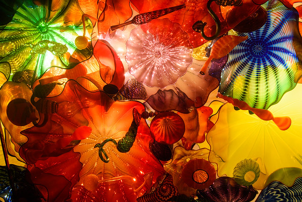 20160824 Seattle Space Needle and Chihuly Garden 049