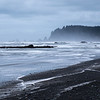 20170310 Rialto Beach 022