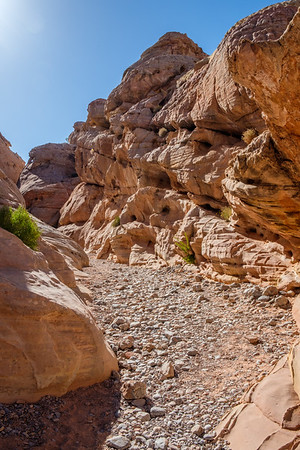 20170514 Valley of Fire 026