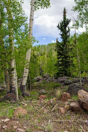 20090603 Scenic Utah 12 018