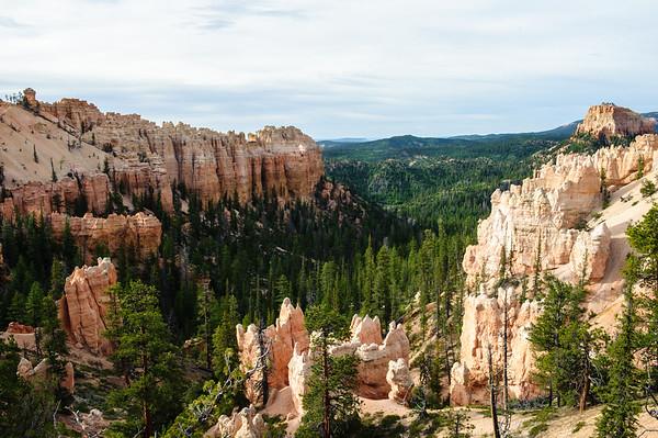 20090604 Bryce Canyon 067