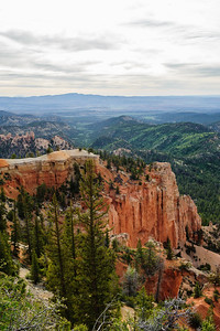 20090604 Bryce Canyon 075