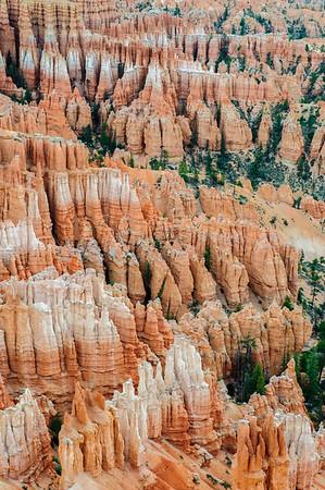 20090604 Bryce Canyon 031