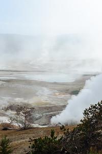 20110712 Yellowstone NP 047