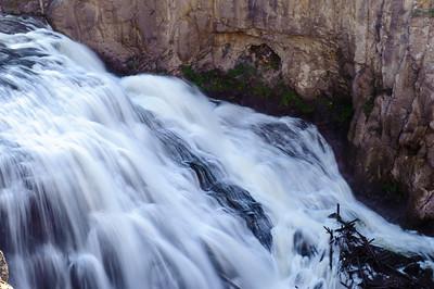 20110712 Yellowstone NP 031