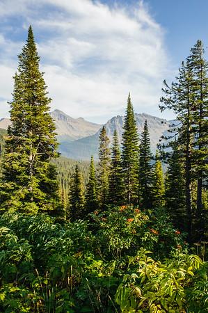 20120914-15 Glacier NP 035