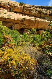 20121005 Mesa Verde 040