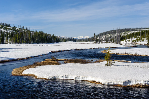 20130511-12 Yellowstone 009