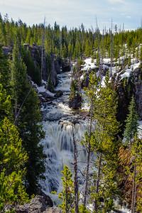20130511-12 Yellowstone 020