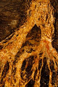 20130816-18 Yellowstone 122