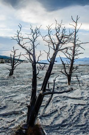 20130816-18 Yellowstone 012-HDR
