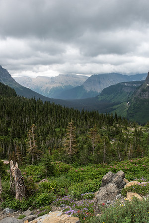 20150712 Glacier NP and Waterton 028