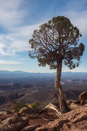 20160313 Canyonlands National Park 134