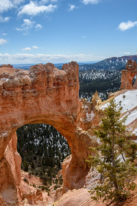 20160326 Bryce Canyon 089