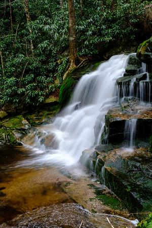 20180504-05 Blackwater Falls State Park 027